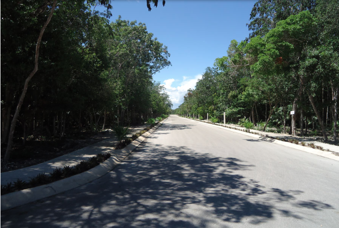 Residential lot in Tulum for sale